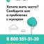 Radar_web_600x750.png